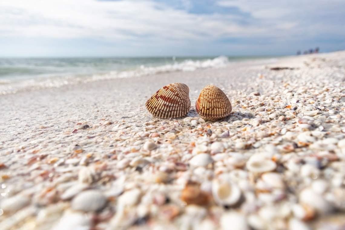 Marco-Island-Florida-Real-Estate-Downing-Frye-6